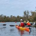 Black River Cypress Preserve Paddle - Saturday, May 15, 2021