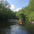 Lynches River Spring Paddle