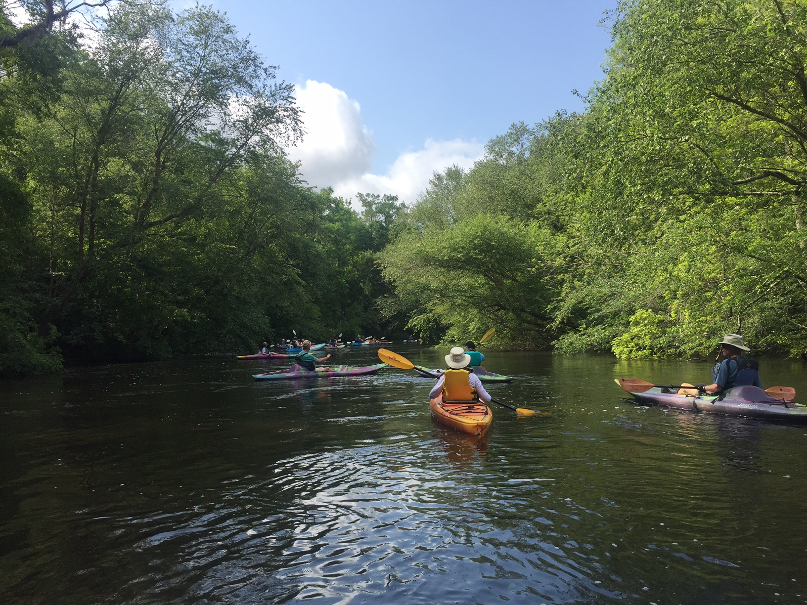 Sold Out! Black River Cypress Preserve Paddle - Saturday, May 15, 2021