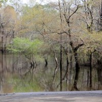 Hemingway considers renovating Snows Lake Landing
